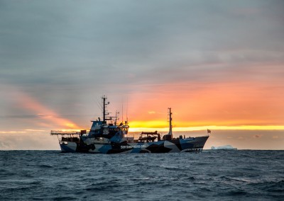 Carolina_A_Castro_Antarctica_Sea_Shepherd-5054