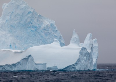 Carolina_A_Castro_Antarctica_Sea_Shepherd-6854